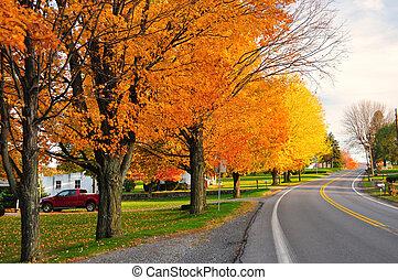 scénique, route, automne