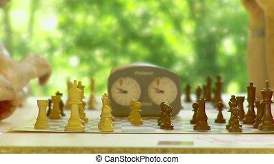 scacchi, campagna, amici, torneo - alberi, natura, calma,...