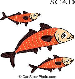 Scad fish color cartoon vector illustration.