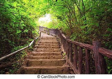 scala, foresta, nazionale, erawan, parco