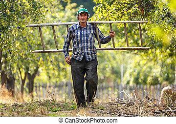 scala legno, vecchio, contadino