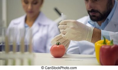 Scaled up view on man injecting chemicals into tomato -...