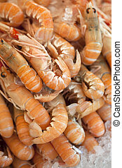 Scampi on a market stall