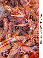Scampi on the fish market