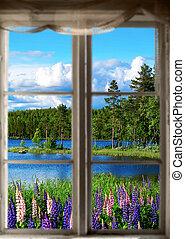 scandinave, été, paysage