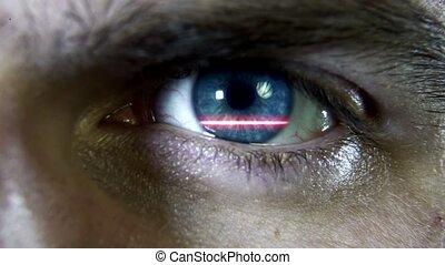 Scanner eye macro plan 4k