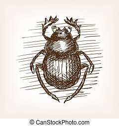 Scarab beetle hand drawn sketch vector