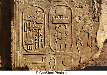 Scarab Relief Luxor Temple Egypt