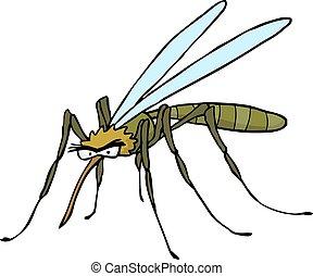 scarabocchiare, cartone animato, zanzara