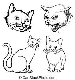 scarabocchiare, gatto, set, disegnato, mano