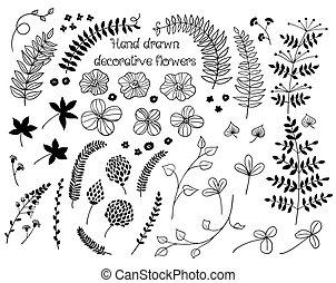 scarabocchiare, piante, e, fiori, collezione