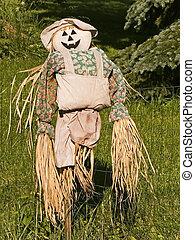 A scarecrow with a pumpkin face.