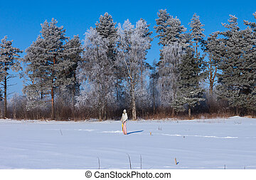 Scarecrow in winter field