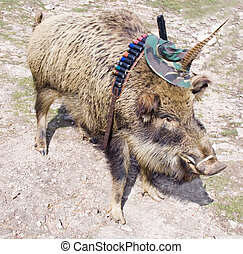 Scarecrow of a wild boar dressed up in the hunter