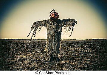 scarecrow on halloween