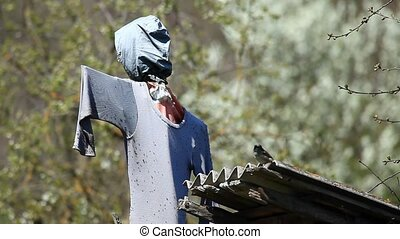 Scarecrow on the roof scaring off a sparrow