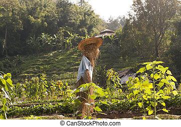 scarecrow, straw man at the farm