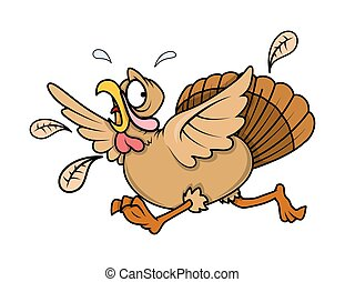 Scared Turkey Bird Running - Scared Fearful Turkey Bird...