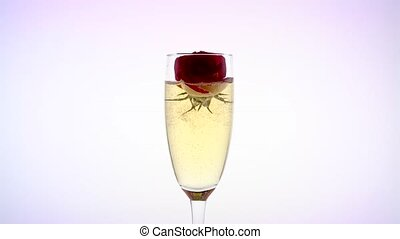 Scarlet rose bud inside sparkling champagne glass. White...