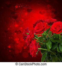 scarlet roses on dark background - scarlet roses on dark...