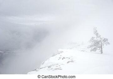 scarp, montagne