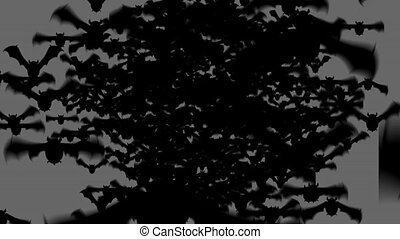 Scary bat animation for halloween on grey background