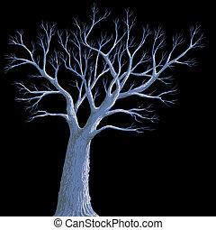 scary, enlige, gammelt træ, baggrund, nat
