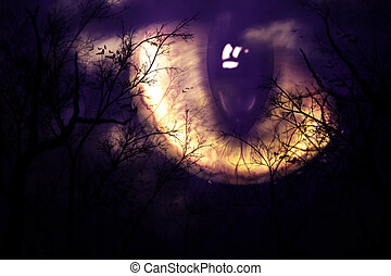 Scary monster's eye watching forest at night