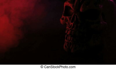 scary skull on black