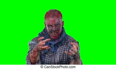 Scary zombie in halloween isolated green background -...