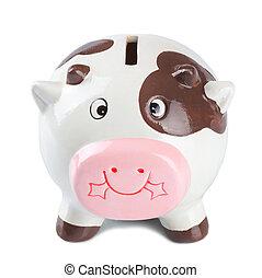 scatola, moneta, mucca