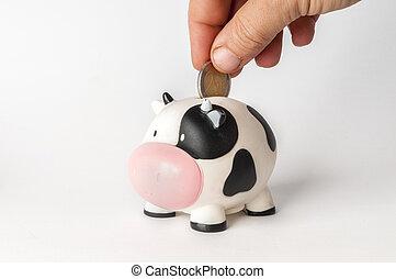 scatola, mucca, modellato, soldi, mano, 2, mettere, moneta, euro