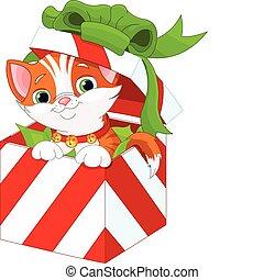 scatola, regalo natale, gattino
