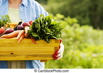 scatola, verdura, donna, anziano, presa a terra