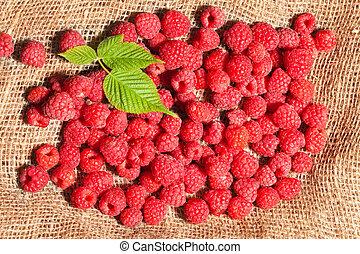 ripe raspberries on sack fabric