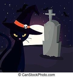 scen, måne, kyrkogård, svart katt