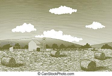 scena, drzeworyt, stodoła