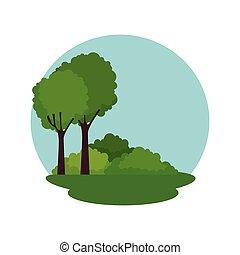 scena, foresta, paesaggio, icona