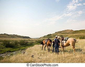 scena, kowboj