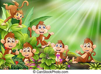 Gruppo cartone animato caratteri scimmia. divertente gruppo