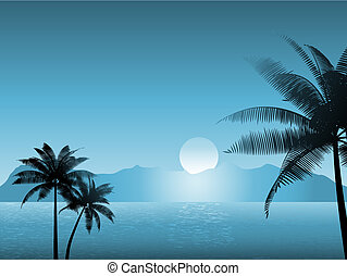 scena tropicale, notte