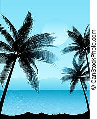 scena, tropicale