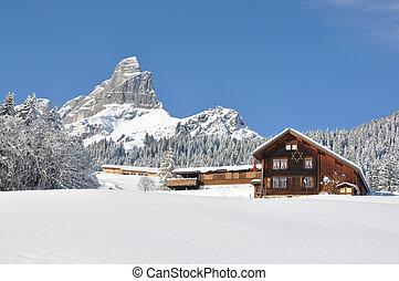 scenario, alpino