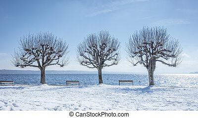 scenario, baviera, inverno, tutzing