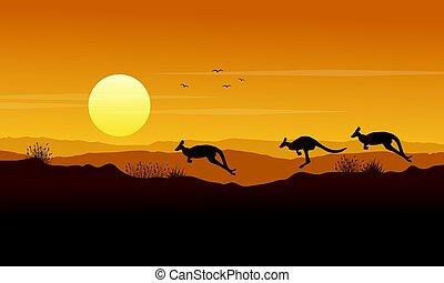 scenario, canguro, silhouette, collezione, bellezza