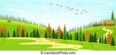 scenario, foresta, cabina