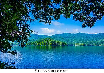 scenario, montagne, grande, fumoso, lago,  santeetlah