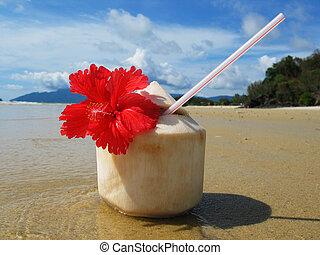 scene., langkawi, 浜, 島, malayisa