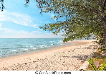 scene., natureza, tropicais, holiday., mar, praia
