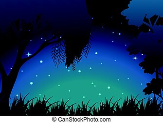 Scene of forest at night